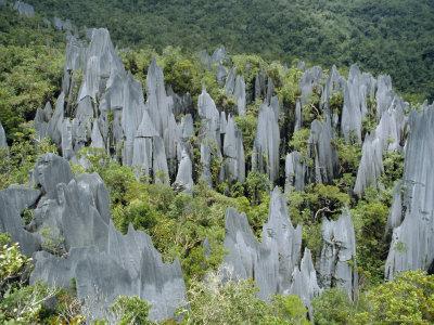 Limestone Pinnacles